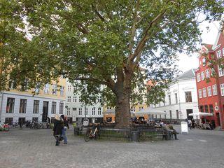 CopenhagenSquare