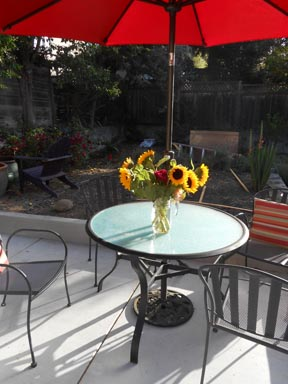 JuneGardenWithSunflowers