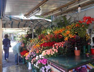 Palermo_FlowerMarket