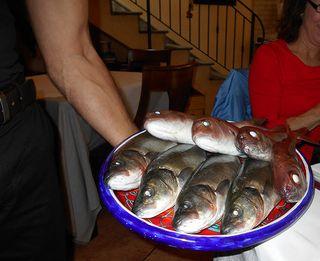 Taormina_fish