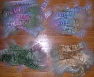 Rovingincolors